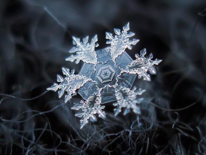 Удивительные и неповторимые снежинки крупным планом